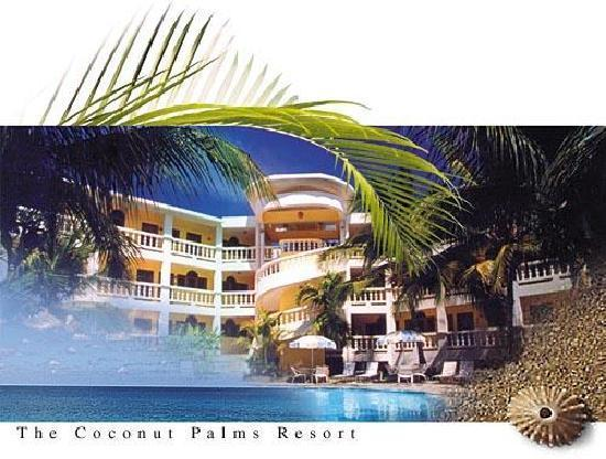 The Coconut Palms Resort